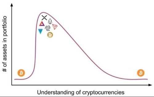 Grafico con criptovalute possedute decrescente rispetto alla comprensione di Bitcoin