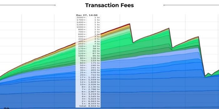 Grafico che mostra le transazioni in attesa di conferma coon le relative fee incluse